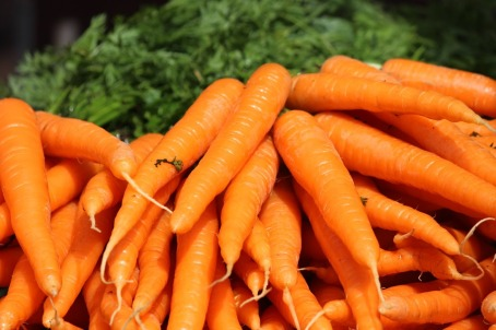 the-carrot-410670_960_720