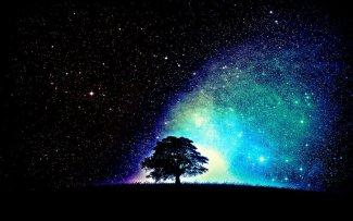 tree_under_stars_by_xsilentrebelx-d5h37fq