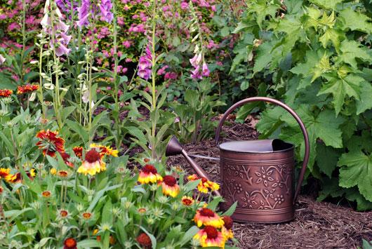 weed-free-garden-ideas