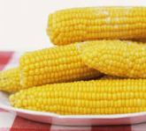 indexcorn22