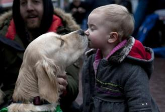 therapy-dogs-sandy-hook