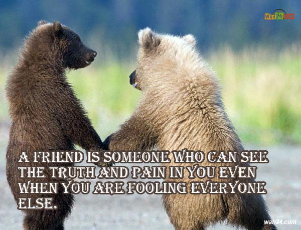 5216-8-dosti-bear-friendship