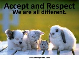 1737018595-We-are-all-different-respect
