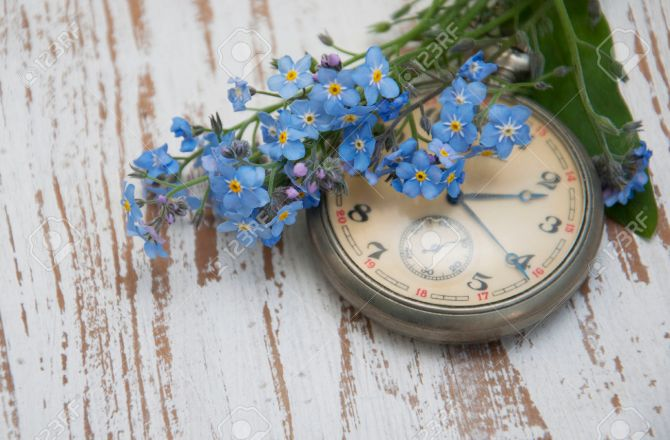 Vintage Pocket watch and forget-me-not flowers on a wooden background