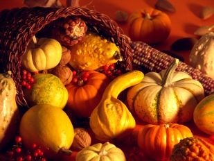 635838425910086616-649647903_thanksgiving-scene-decoration-copy