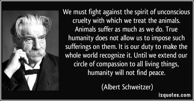 albert-schweitzer-quote1