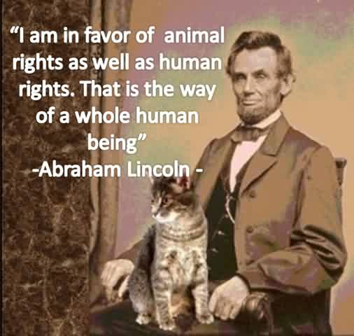 animal-and-human-rights-quote