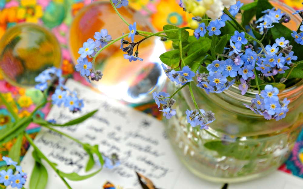 forget-me-not-flowers-vase