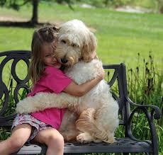 imagespuppy-hug