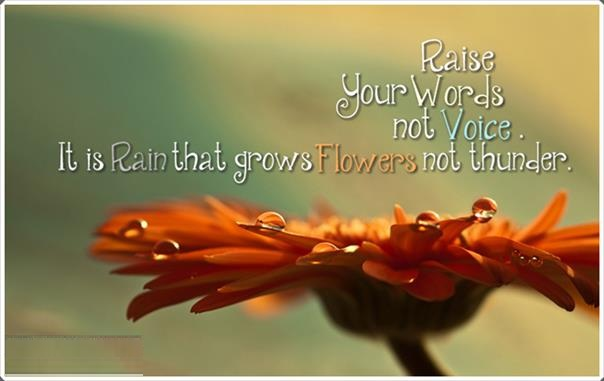 rumiw-rain-growns-flowers-not-thunder