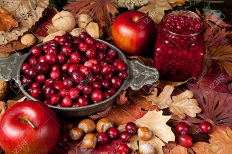 10761452-thanksgiving-still-life-with-cranberries-autumn-leaves-apples-and-nuts-stock-photo