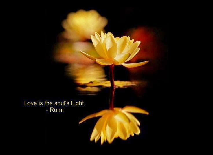 11513-souls-love-is-the-light-rumi