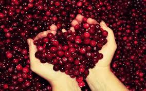 images-cranberries