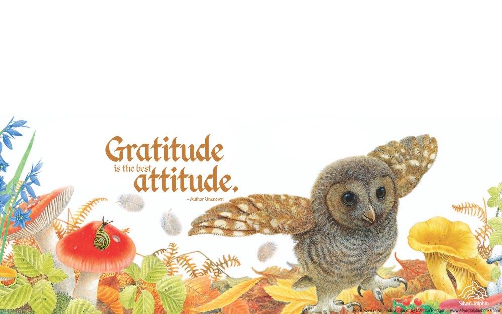 olivia-owl-desktop-wallpaper-2520x1575-quote