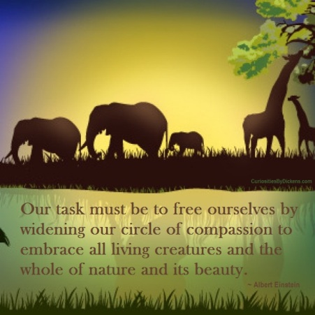 our-task-must-be-to-free-ourselves-by-widening-our-circle-of-compassion-to-embrace-all-living-creatures-and-the-whole-of-nature-and-its-beauty-albert-einstein