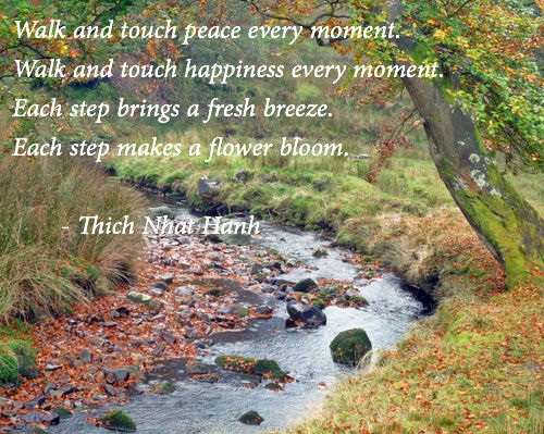 thich-nhat-hanh-walk-touch