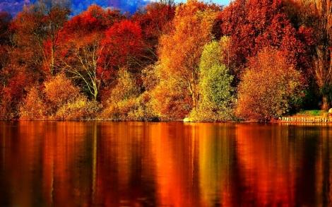 wallpaper-autumn-12
