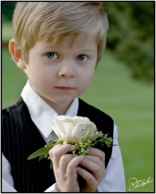 boy-with-white-rose