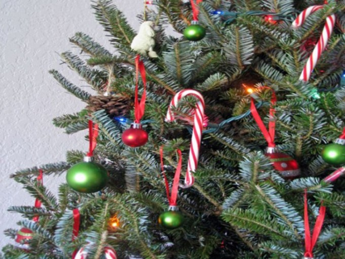 candy-canes-on-tree-8-537x5-728x546