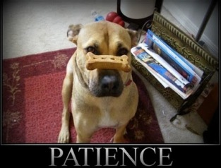 impatience-quotes-8