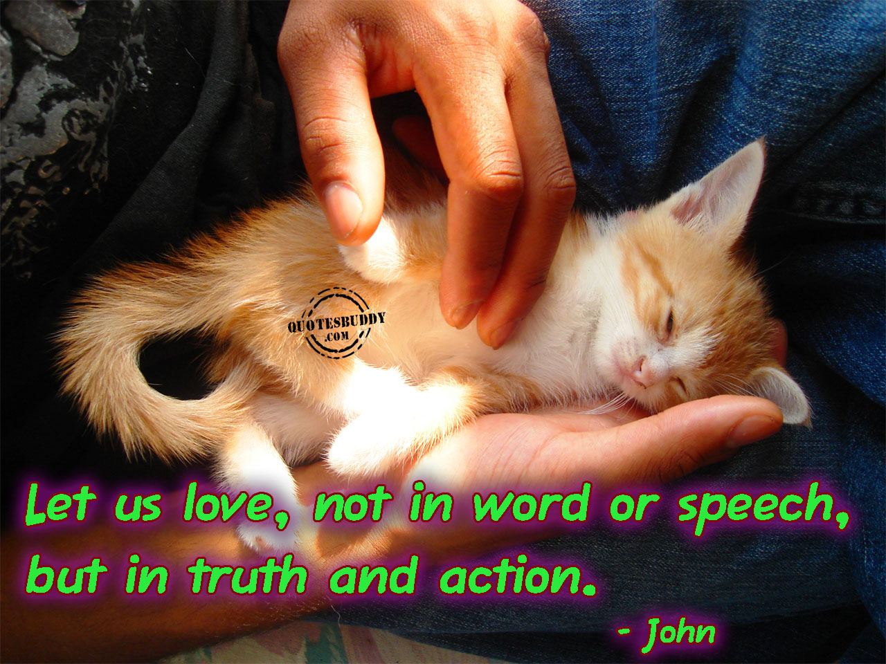 let-us-love-not-in-word-or-speech-but-in-the-truth-and-action-bible-quote