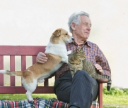 Senior man with dog and cat on his lap on bench