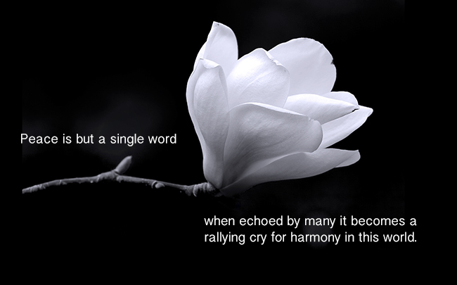 peace-is-but-a-single-word-when-ecroed-by-many-it-becomes-a-rallying-cry-for-harmony-in-this-world