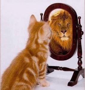 perception-cat-or-lion-285x300