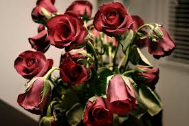 images-jpgwilted-roses