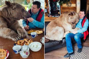 main-pay-svetlana-and-yuriy-panteleenko-and-bear