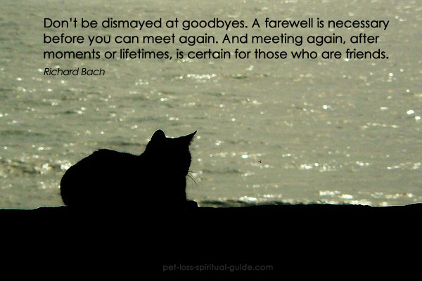 "POEMS: ""A cat"" (about loss of a cat ..."