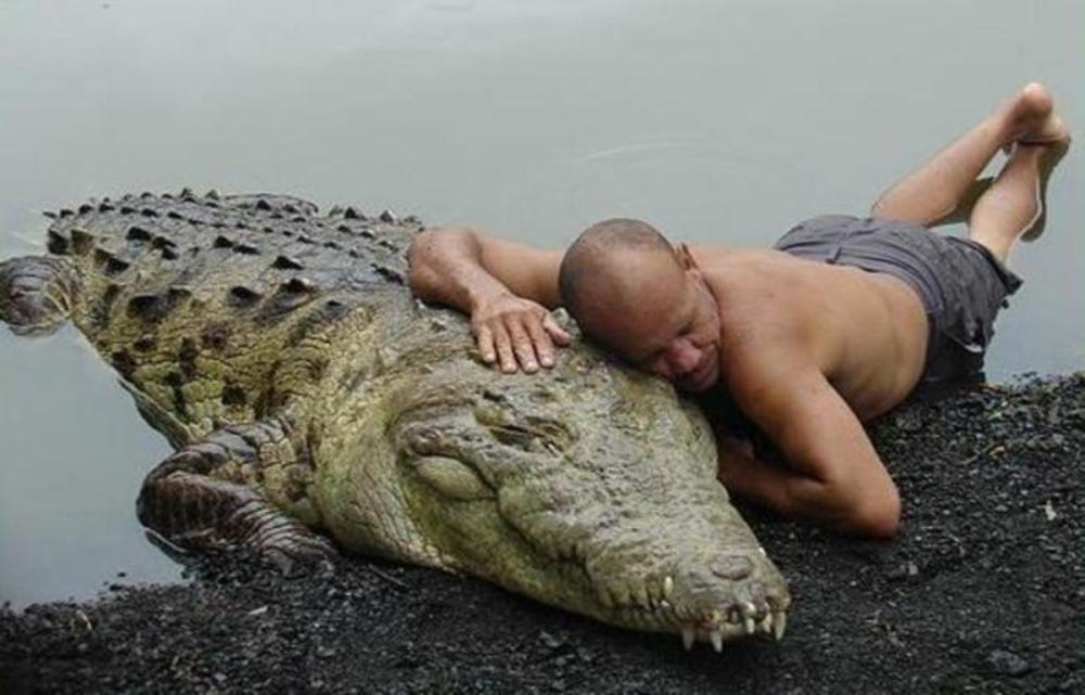 adorable-animals-giving-hugs-crocodile