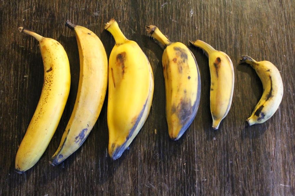 Banana2 093