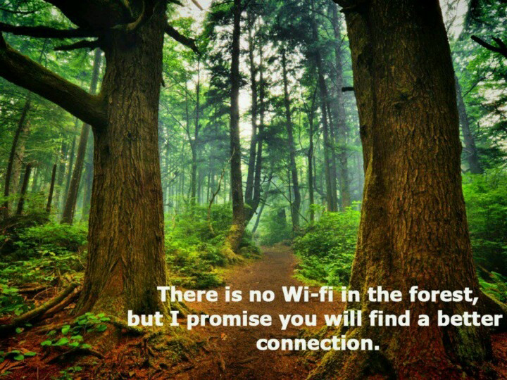 top-nature-quotes-of-all-time-camping