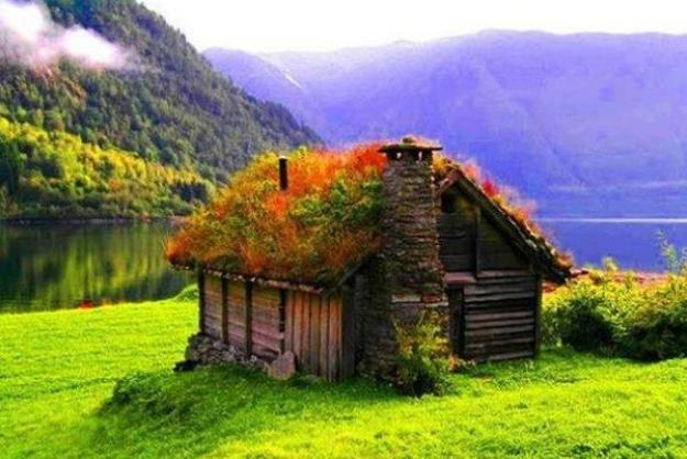 country-eco-homes-modern-houses-11