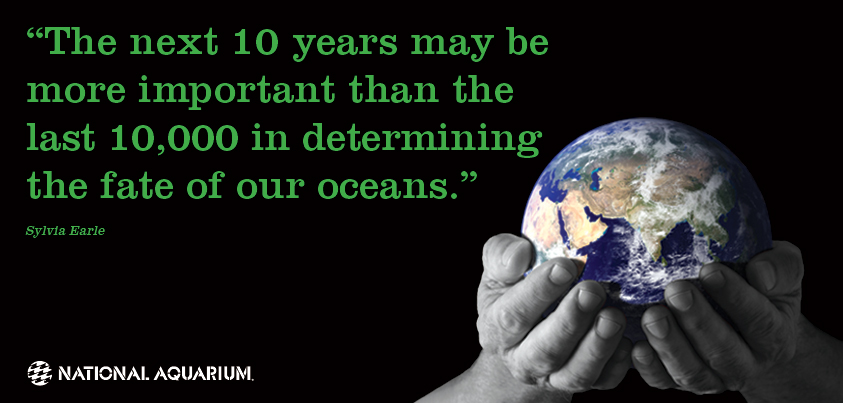 quote_earth_day_fb