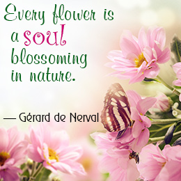 Flower-Quotes-And-Sayings-4
