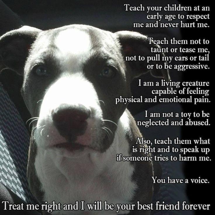 0e3a8688fd9b85ca86a5a953d3d1f52e--best-friends-forever-inspiring-quotes