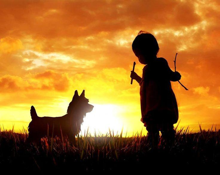 87bdc1fb8ad349063c697871f88e5c4a--sunset-silhouette-silhouette-art