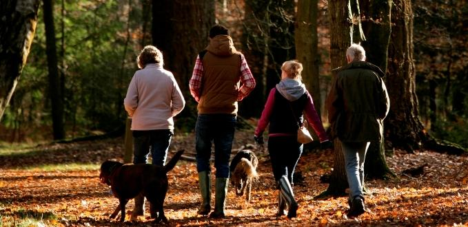 dog-walkers-autumn-m