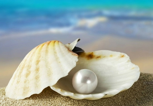 ocean-pearls-oysters__89188.1476833659.490.588