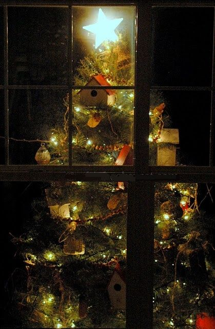 de5f9f84fb653028fa7b33f0da381751--outdoor-christmas-trees-christmas-windows