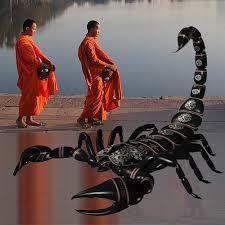 f2652ea1acb8fb7a9db834f406254785--scorpion