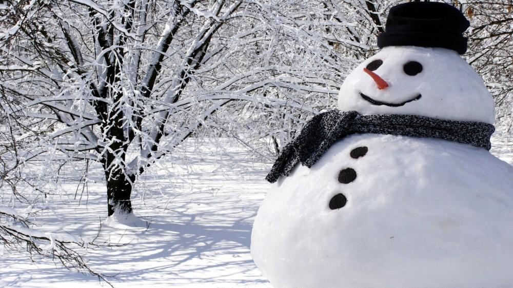 real-snowman-1920x1080-wallpaper