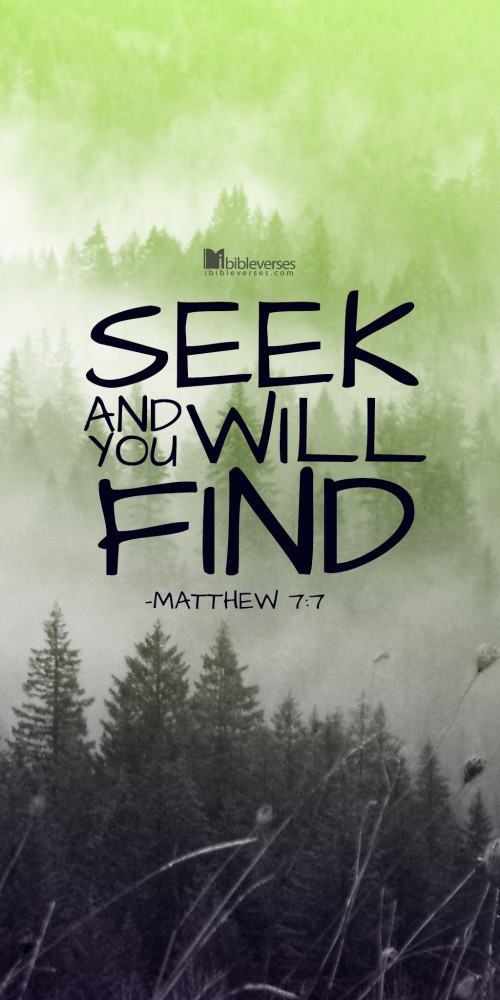 seek-and-you-will-find-500x1000