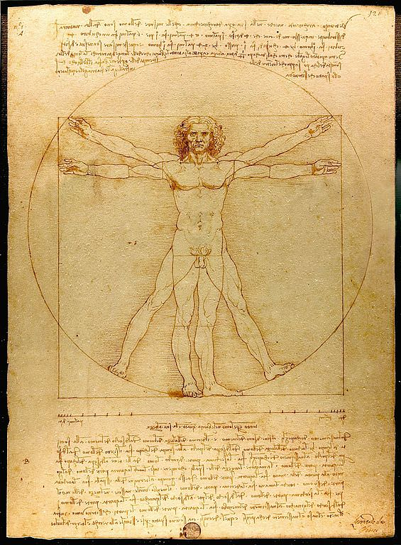 the-vitruvian-man