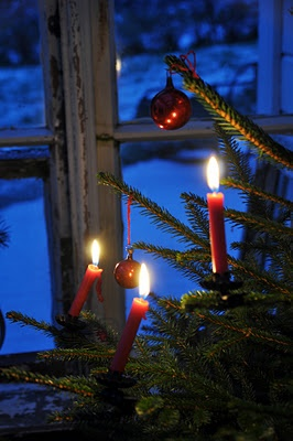 1e63e221f77704bfbd16a780d349497e--christmas-night-christmas-windows