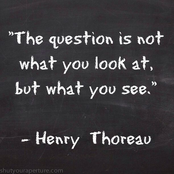 3a8763ea91a1ef70161dcbd9283c296a--thoreau-quotes-quotes-that-inspire