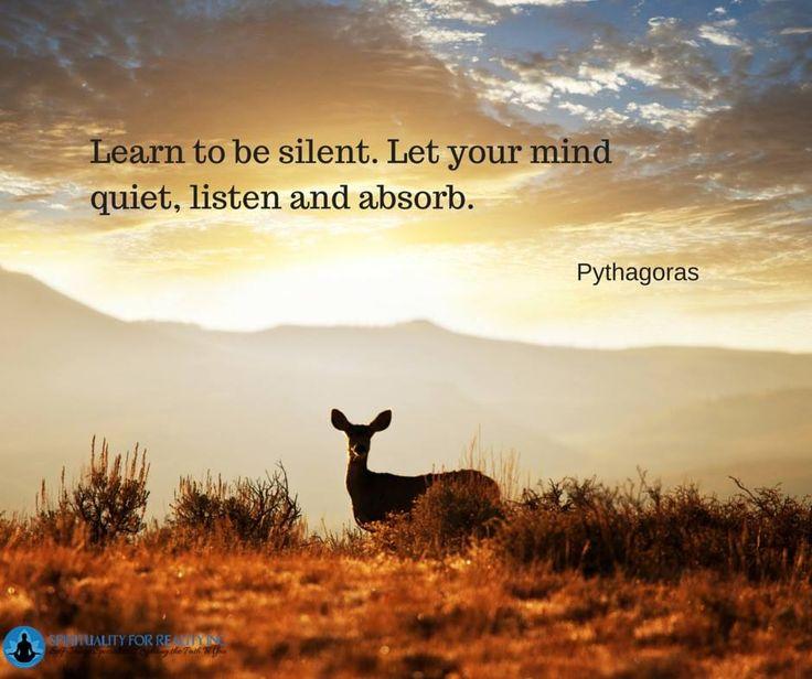 40d26b7e00571ac5aa9688db39da9f32--pythagoras-quotes-daily-quotes