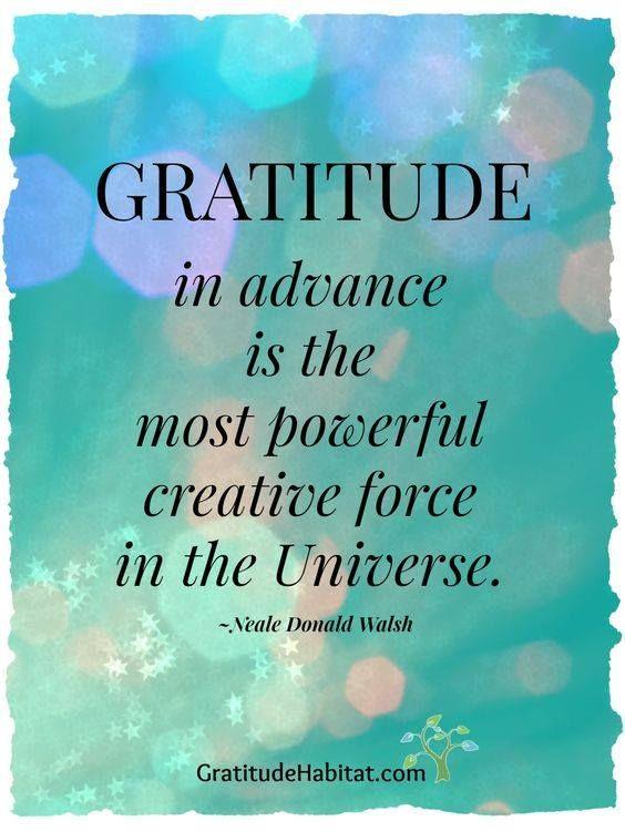 9864e0de1ea687f8ae1476b624daec41--attitude-of-gratitude-gratitude-quotes